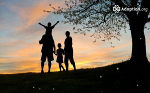 Is Adoption Trauma?
