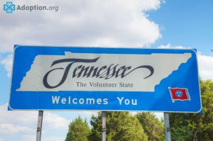 What Are the Adoption Laws in Tennessee?