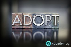 What Are the Top Adoption Rules to Know About?