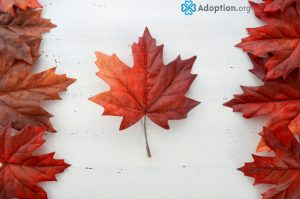How Does Adopting a Child in Canada Work?