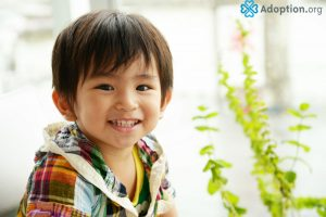 What Is Special Adoption in Japan?