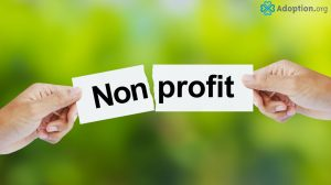What Are Nonprofit and For-Profit Adoption Agencies?