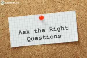 What Questions Must I Ask A Social Worker Before Placement?