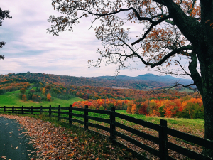 West Virginia Adoption Guide