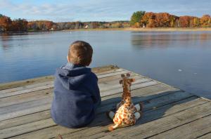 New Hampshire Adoption Guide